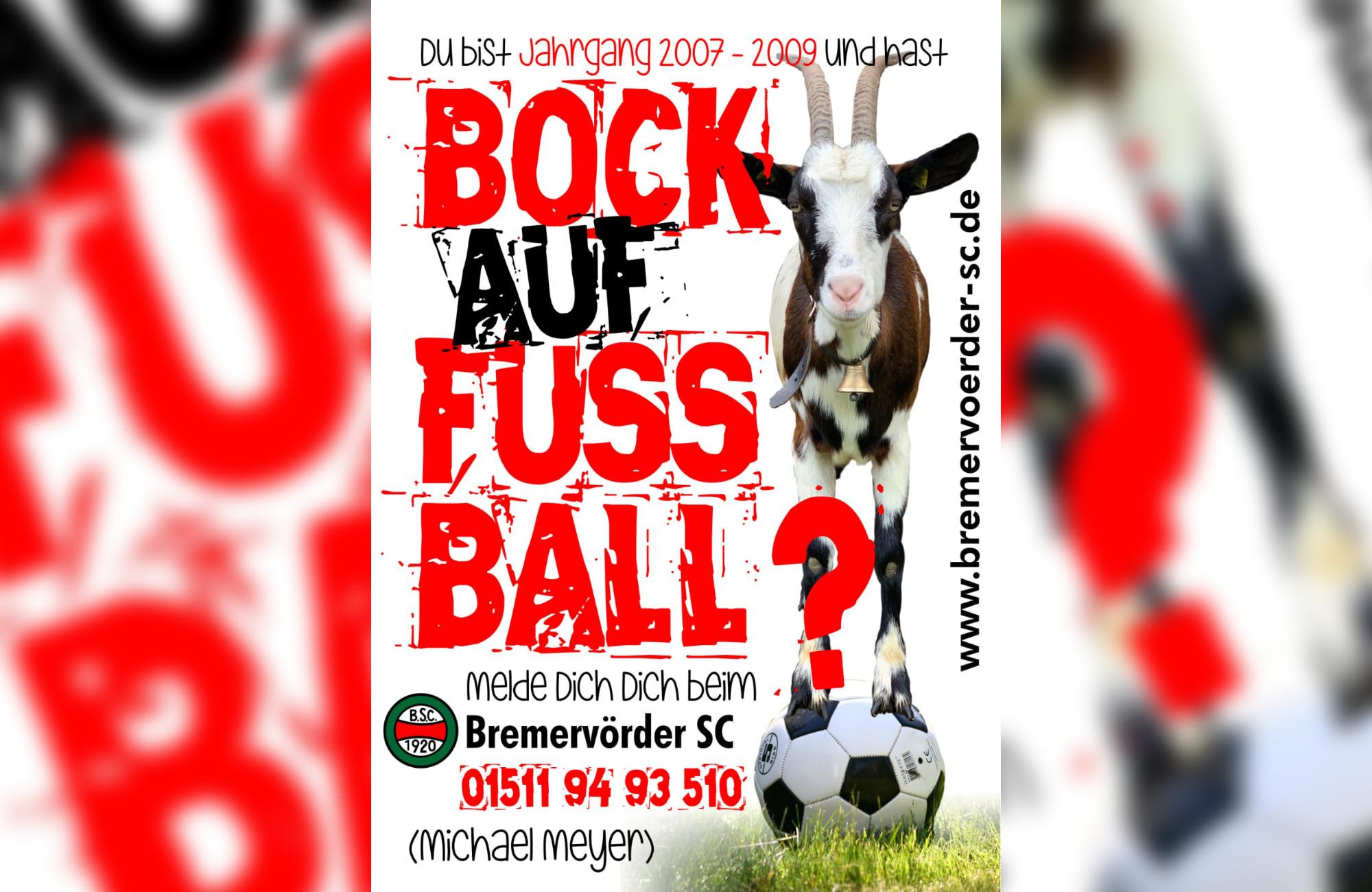 bock-auf-fussball